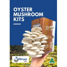 BULK RETAIL GROWER PACK Mushroom Kits x 9 Kits IN GIFT BOXES upto 3 types  - FREE Shipping to 90% of Australia - No Po Boxes